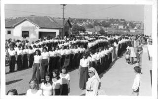 'Estudantes em desfile cívico pela Rua Cornélia Alves Biclaho, vendo-se ao fundo o casario do bairro Camposaltinho 1960 a 1979