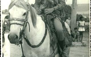 'Amazona não-identificada montada 1970 a 1979
