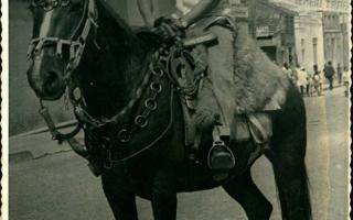 'Cavaleiro não identificado montado na Rua Cel. Frederico Franco, vendo-se ao fundo o casario da mesma rua 1970 a  1979'