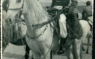José Vitor a cavalo, vendo-se outros cavaleiros de costas. 1970 a 1979